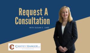 Request A Consultation with Susan E. Lane